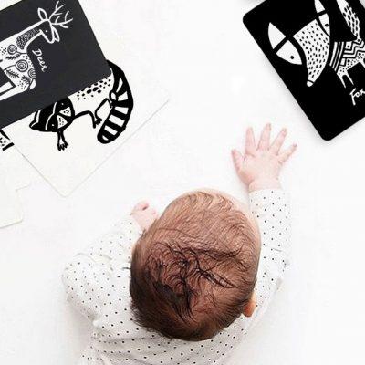 imagier bébé original wee gallery